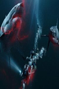 Phim-bộ-hay-nhất-Hành Động-Phiêu Lưu-Võ Thuật-Kiếm Hiệp-Hình Sự-Xã Hội Đen-Thần Thoại-Viễn Tưởng-Tâm Lý-Tình Cảm